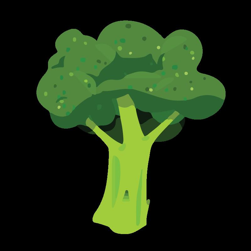 Broccoli, Cost-effective health foods
