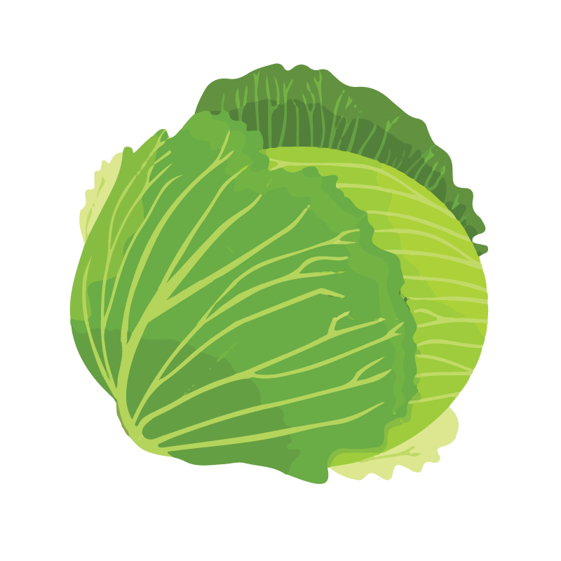 Green Cabbage, Cost-effective health foods